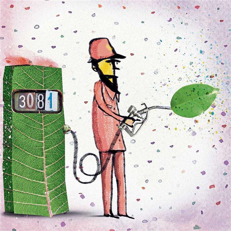 Biodiésel: se vende menos de lo esperado