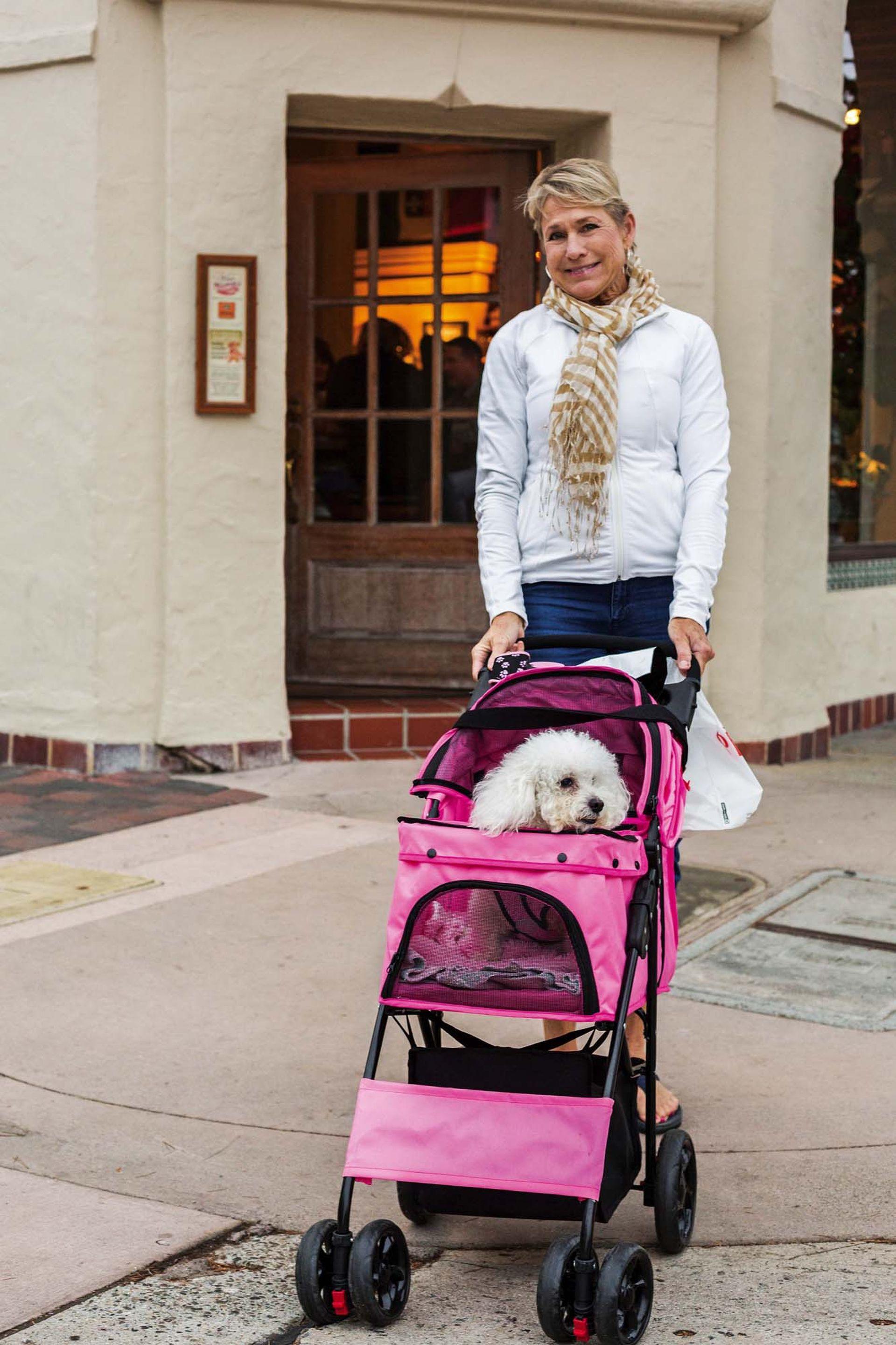Una mujer pasea a su perro en un cochecito, en el centro de Carmel.