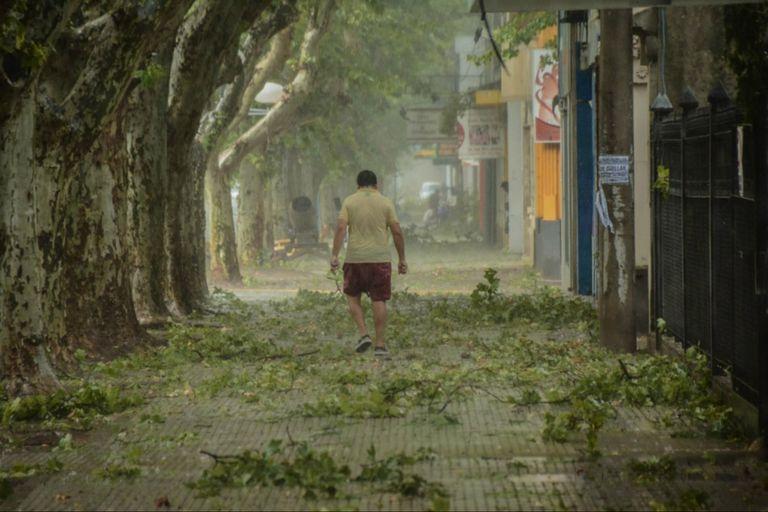 El temporal en localidades de la provincia de San Luis, provocó la voladura de techos, la caída de árboles y el corte del suministro de electricidad.
