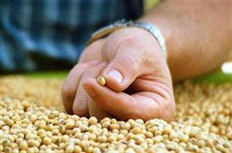 Ante la preocupación oficial, analistas afirman que la suba de las commodities no incide en la inflación