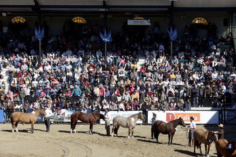 Exposición Rural. La muestra finalizó con ventas por $2739 millones