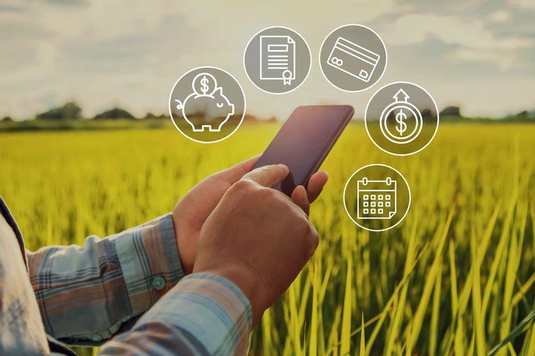 El 9 y 10 de septiembre, representantes de todas estas entidades financieras involucradas en el desarrollo de la producción agroindustrial en la Argentina estarán presentes en Expoagro Digital, la primera exposición virtual de la agroindustria