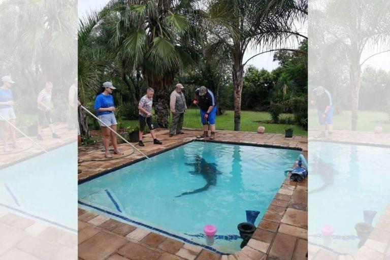 El estremecedor hallazgo de una mujer en la piscina de su casa