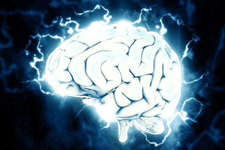Hoy se celebra el Día Mundial del Cerebro