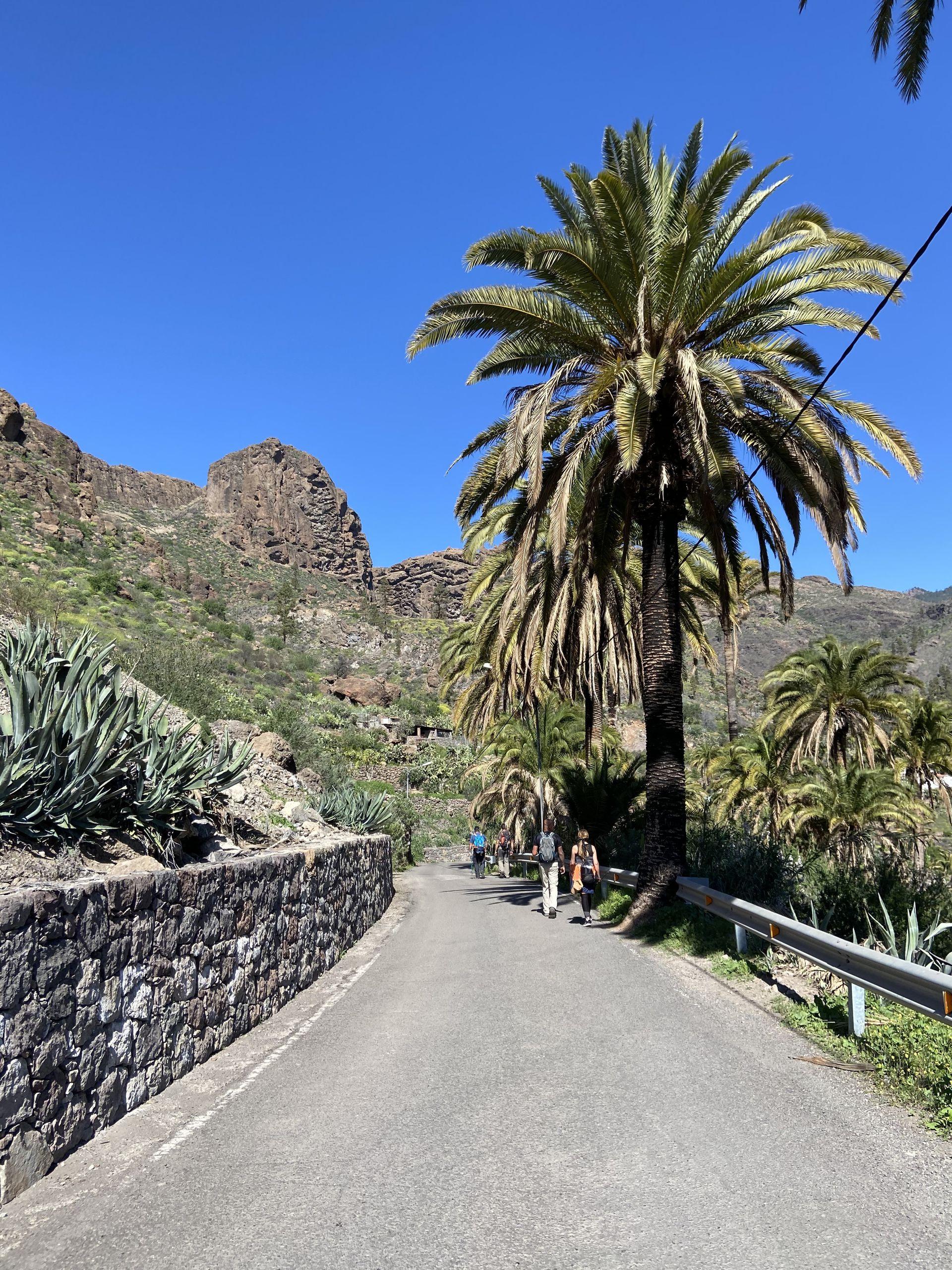 Las Islas Canarias se caracterizan por su paisaje agreste, entre las playas y las montañas.