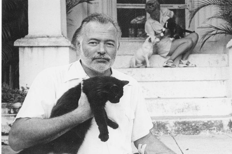 En su casa de Key West, Hemingway llegó a tener más de 30
