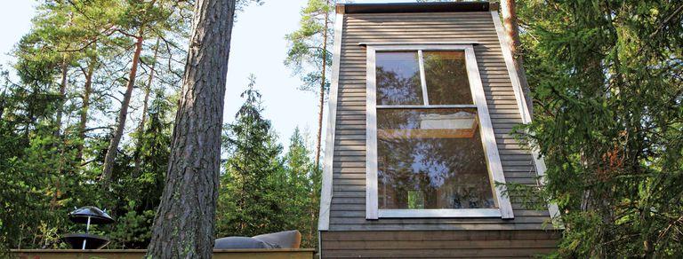 En el bosque. Un diseñador construyó su nido sustentable y libre de impuestos