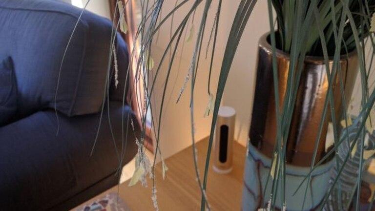Uno de los discretos sensores distribuidos por toda la casa