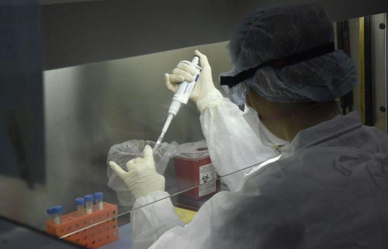 """Se registró un caso de """"hongo negro"""" en Formosa"""