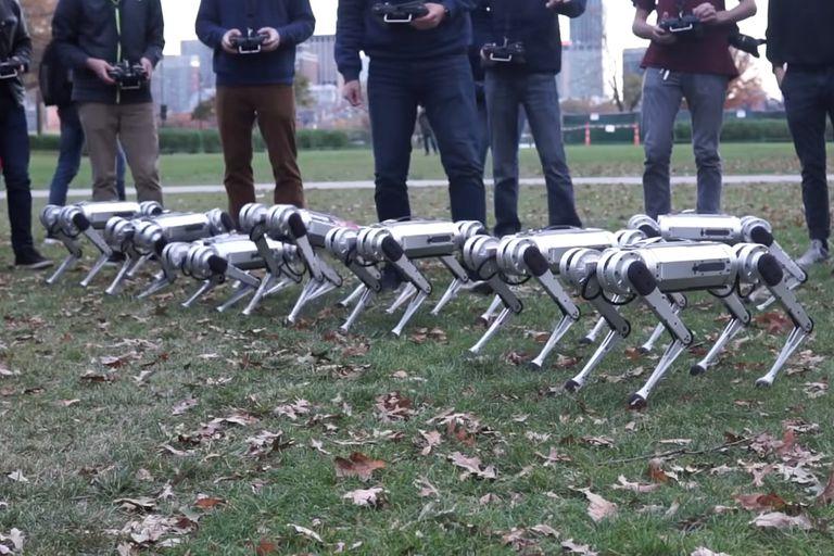 Aún en etapa de desarrollo, el video publicado por el MIT revela las destrezas de este pequeño y robusto robot cuadrúpedo