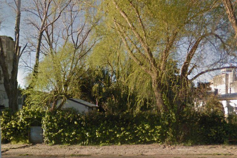 Árboles, un cerco con una enredadera y mucha vegetación impiden que los curiosos miren dentro de la propiedad