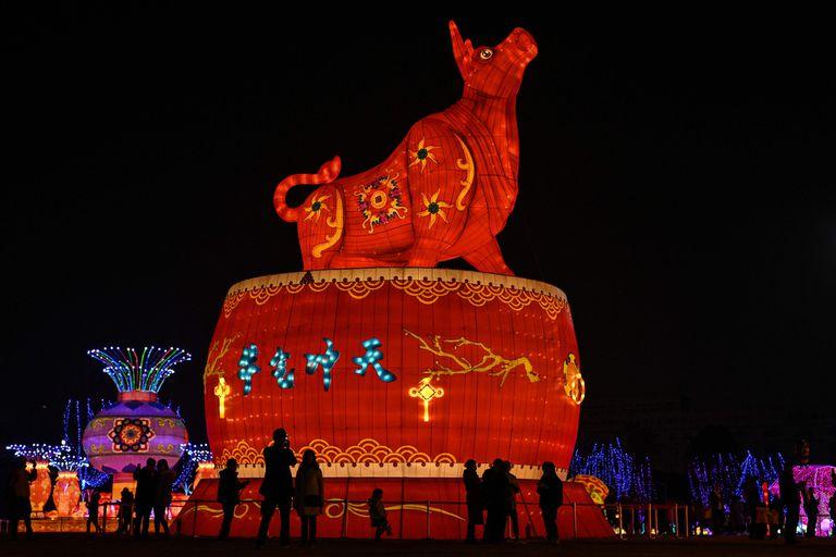 Horóscopo chino del 18 al 25 de octubre: cuáles son las predicciones, según el año de nacimiento