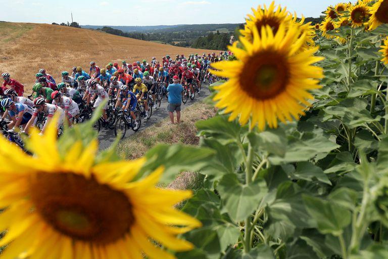 Tour de France: la nueva fecha de realización que salvó al ciclismo de la crisis