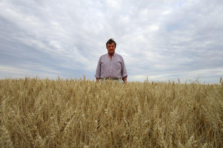 Javier Fornieles tuvo rendimientos de hasta 8800 kilos por hectárea en un planteo con riego en esa región del extremo sur bonaerense