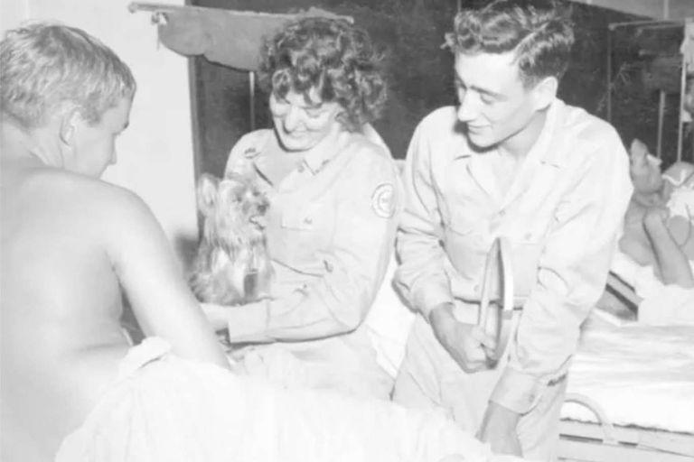 Una enfermera de la Cruz Roja sostiene a Smoky, que está a punto de hacer alguna gracia en un hospital de campaña para entretener a un soldado herido