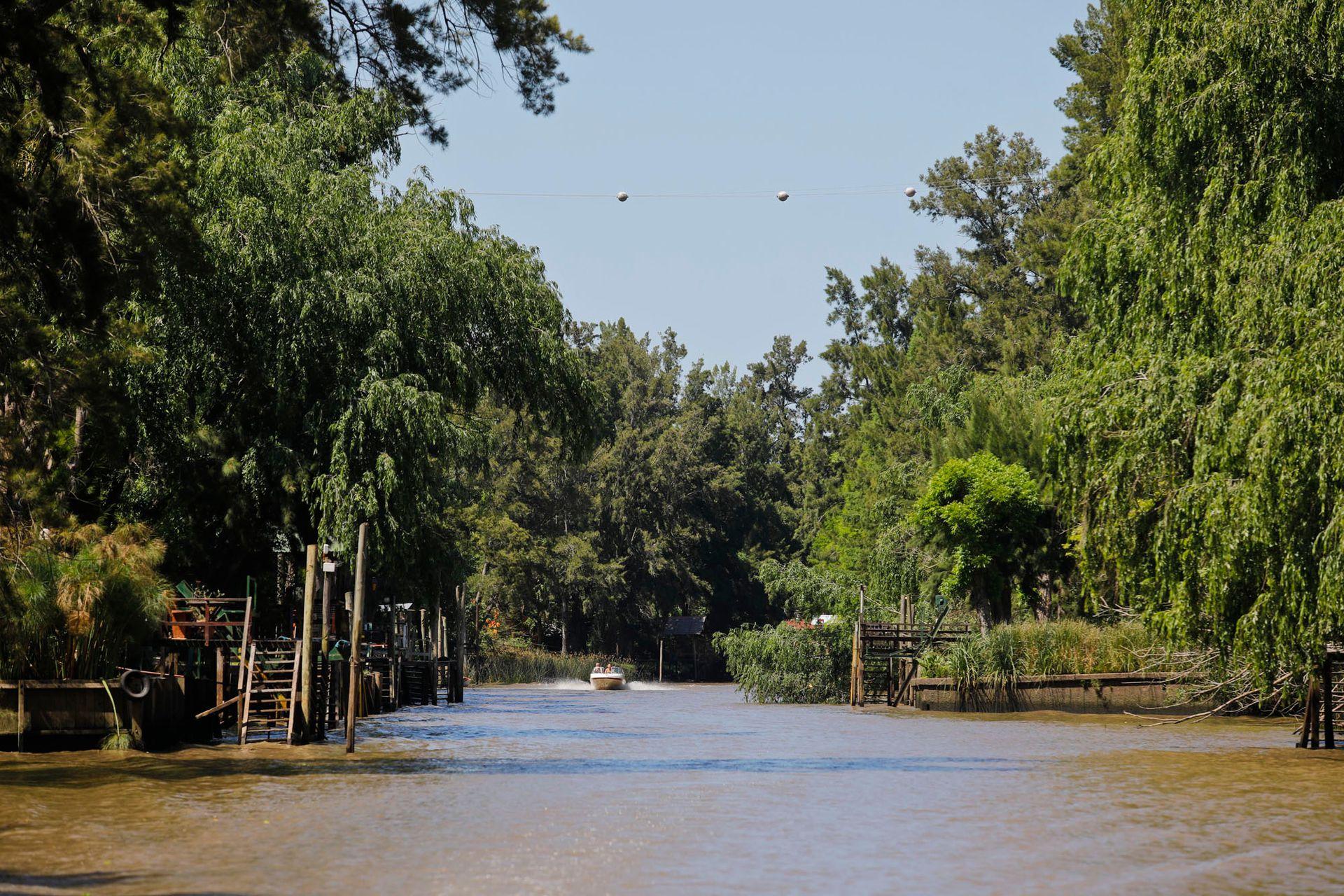Uno de los arroyos del Delta, en la primera sección, que pertenece a la municipalidad de Tigre