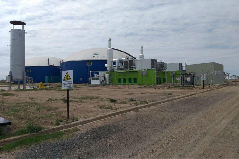 Invirtieron US$12 millones en una planta de biogás con residuos semilleros