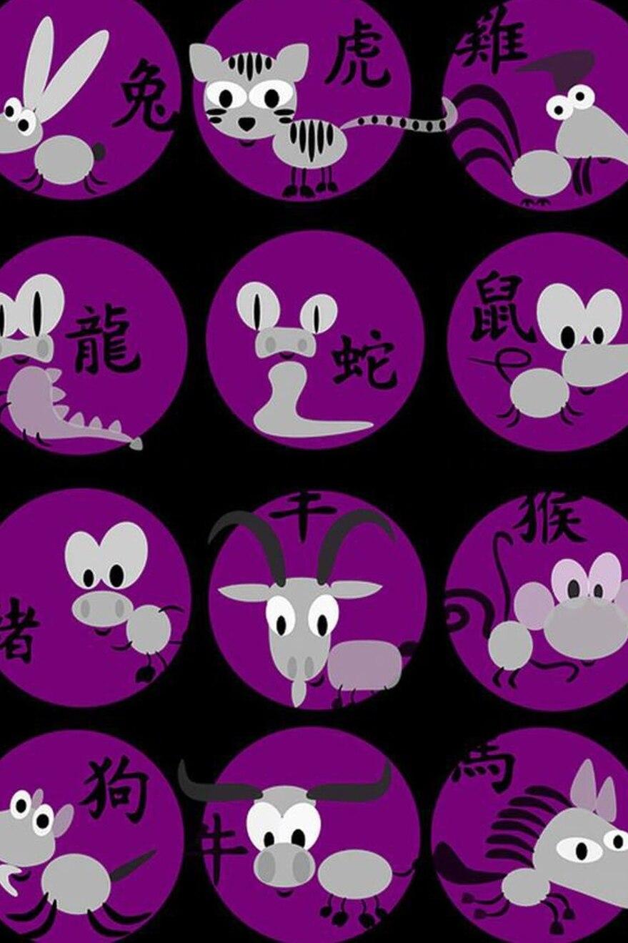 Horóscopo Chino Qué Animal Soy Según Mi Año De Nacimiento La Nacion