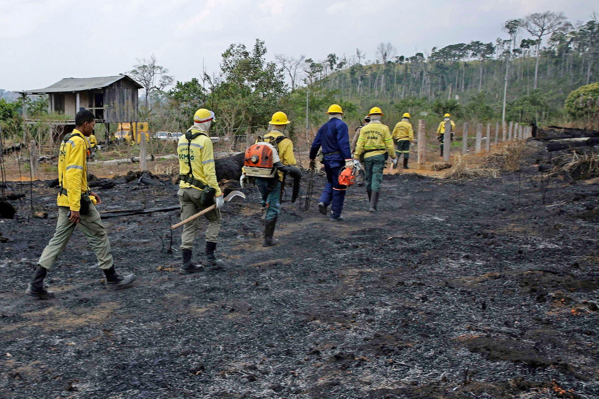 Varios bomberos caminan por lo que quedó de la jungla tras el paso de los incendios