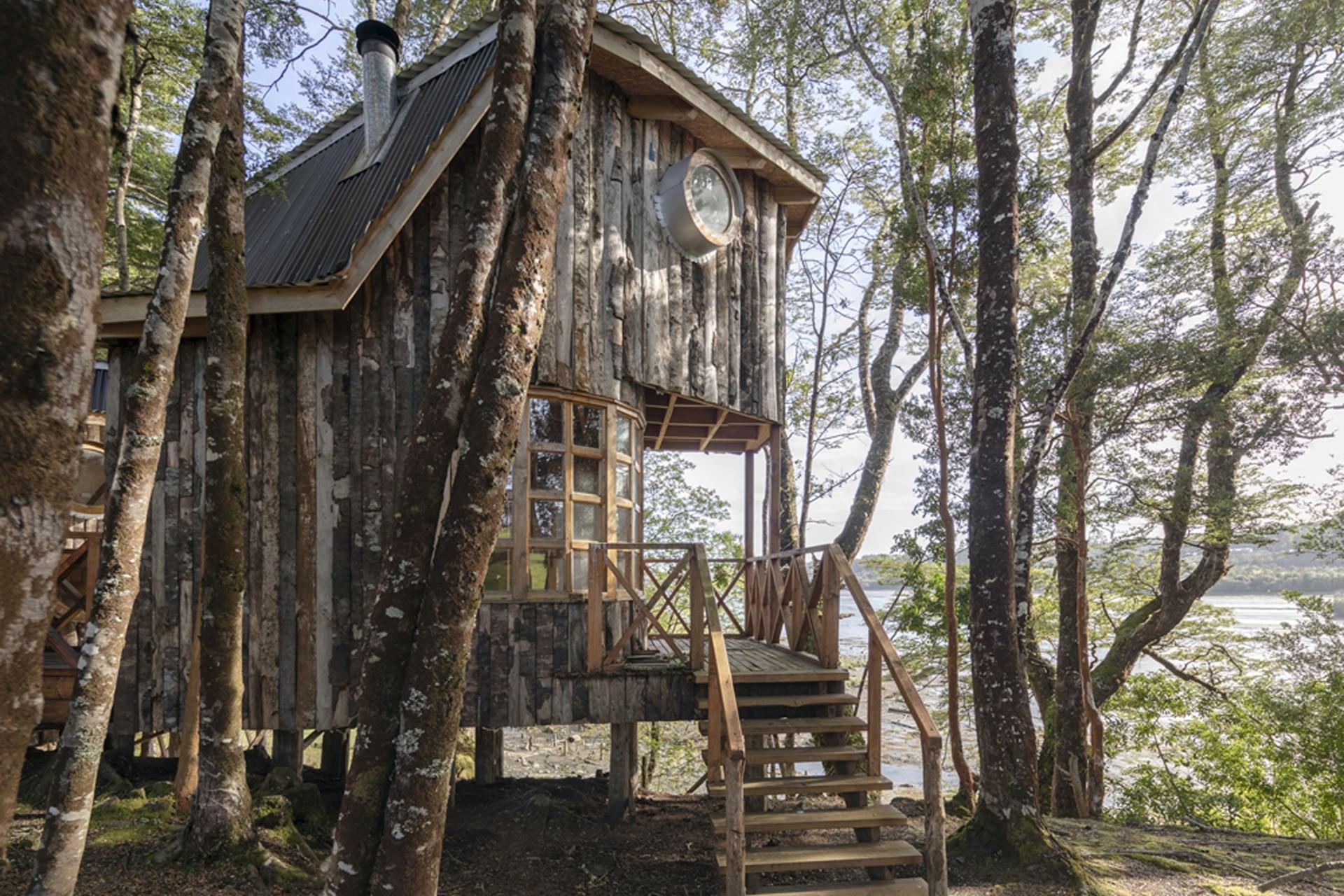 Casas en los árboles