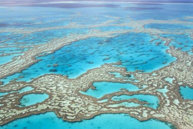 Existen lugares que fueron declarados como maravillosos debido al significativo aporte que brindan al planeta
