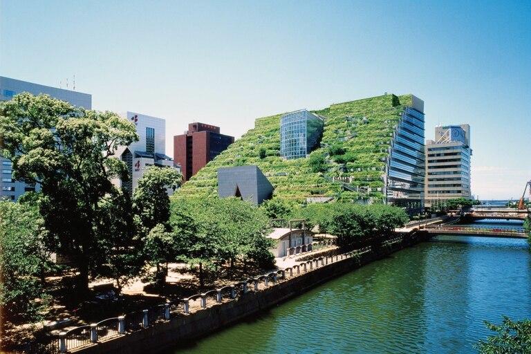 Su célebre Acros, un ecosistema artificial en pleno centro de Fukuoka, Japón
