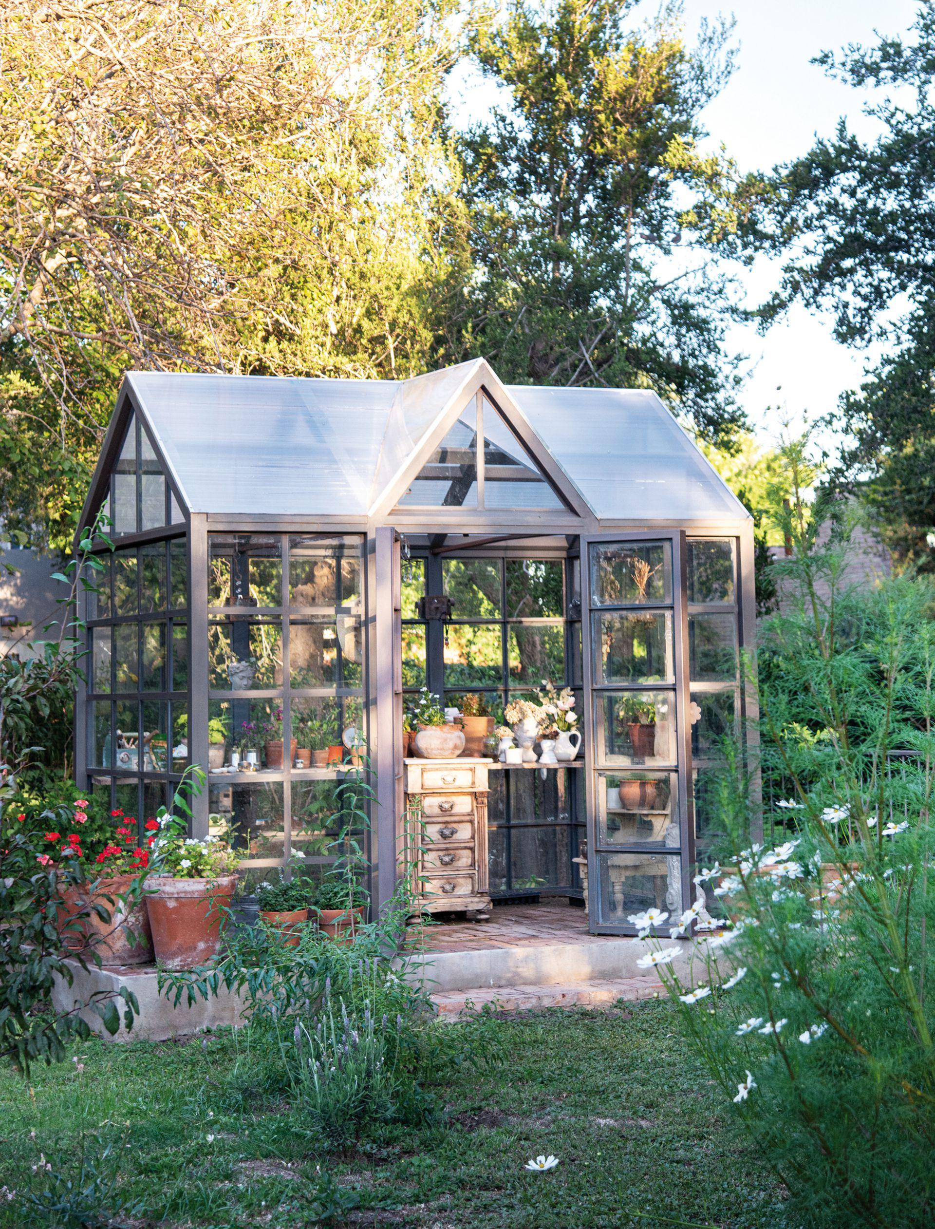 Mini invernadero donde se ven algunos plantines.  Allí se juntan y guardan las semillas también.