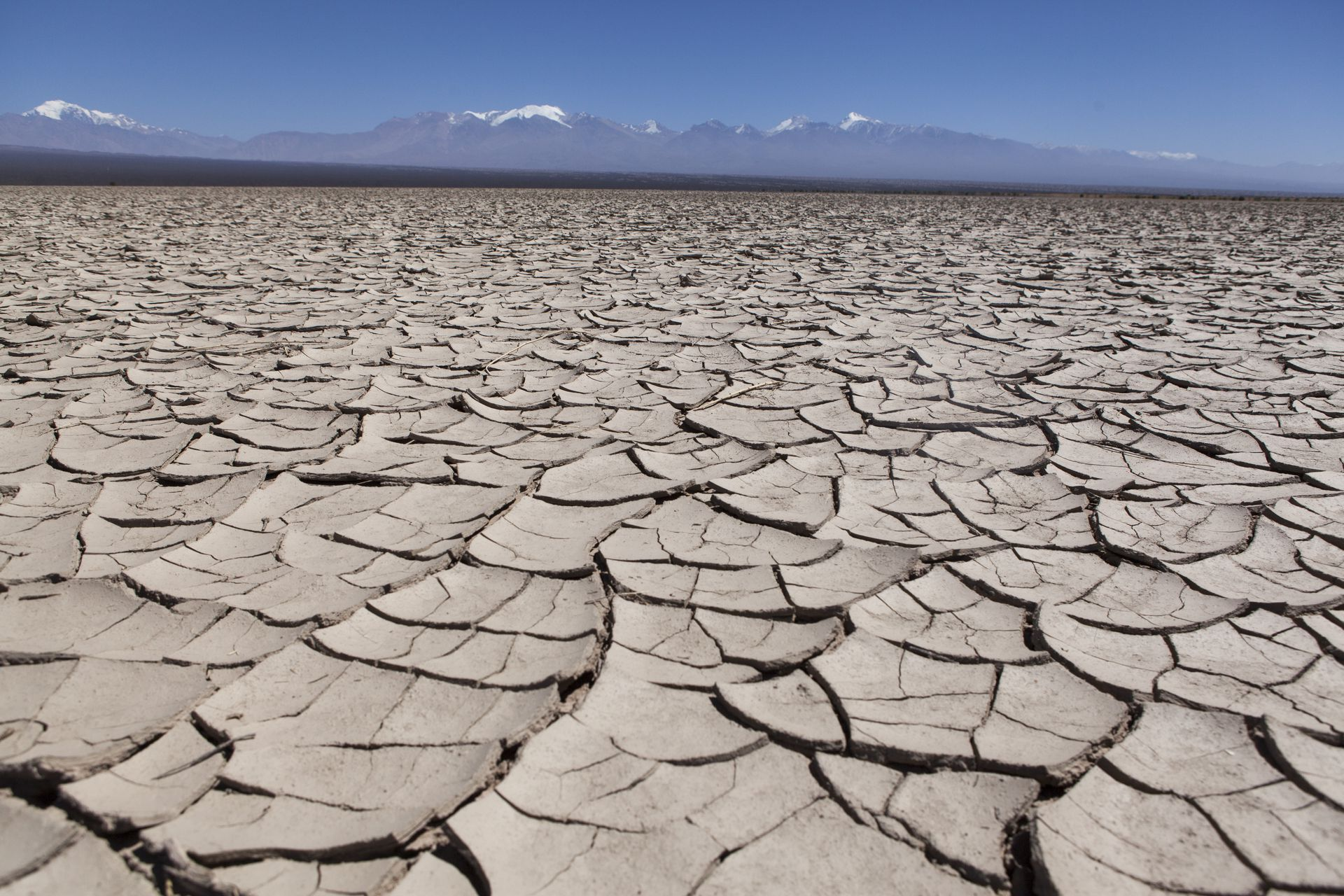 La planicie arcillosa y agrietada de la Pampa del Leoncito, en Barreal, fue en algún momento una laguna.