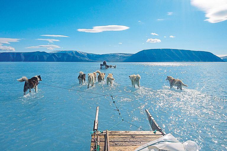 Los perros del trineo de Olsen corren sobre una zona de hielo derretido en Groenlandia
