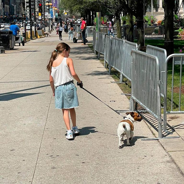 La familia de Gastón Dalmau paseó por Chicago con la mascota del actor y de José Navarro, su pareja