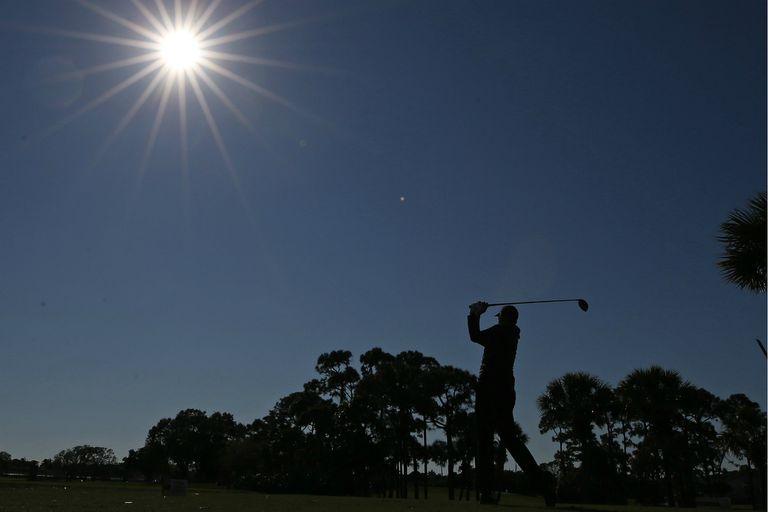 Golf de locos, con un águila de 206 yardas y la pelota incrustada en un árbol