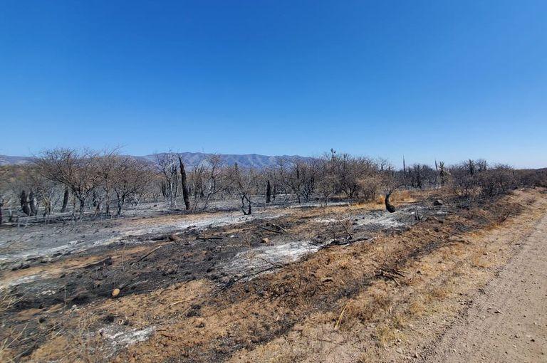 Lograron controlar los incendios en Córdoba, pero hay alerta por el clima