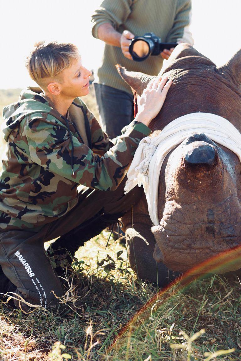 20 de mayo. Charlene sorprendió con unas impactantes imágenes en su campaña para salvar a los rinocerontes. Fue entonces cuando contrajo una infección respiratoria.