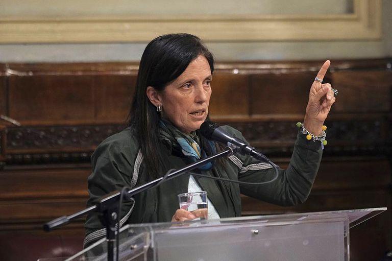 El pedido de Claudia Piñeiro a los Senadores en el debate por el aborto