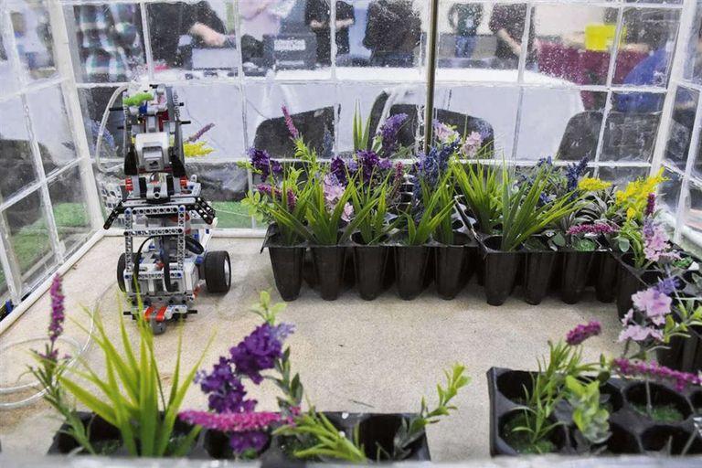El vivero automatizado fue un proyecto de alumnos de cuarto año que ganó varios premios
