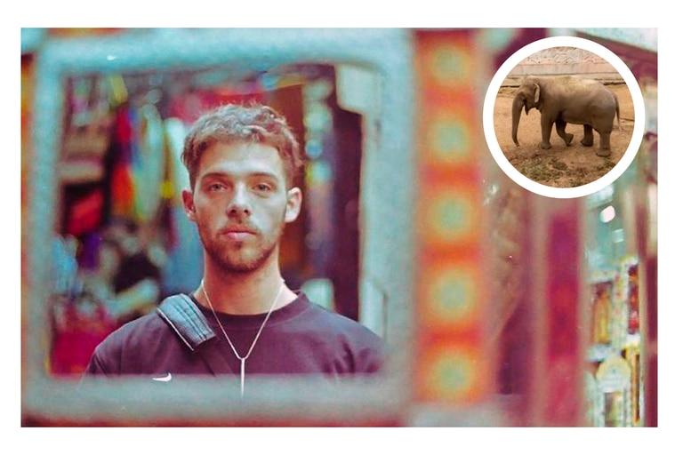 Santi Maratea donó el excedente de distintas campañas solidarias previas para que el elefante Tamy pueda ser trasladado dedesde Mendoza a un santuario animal en Brasil