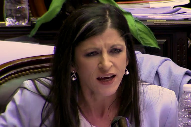 Reclaman echar a Fernanda Vallejos de la Cámara de Diputados