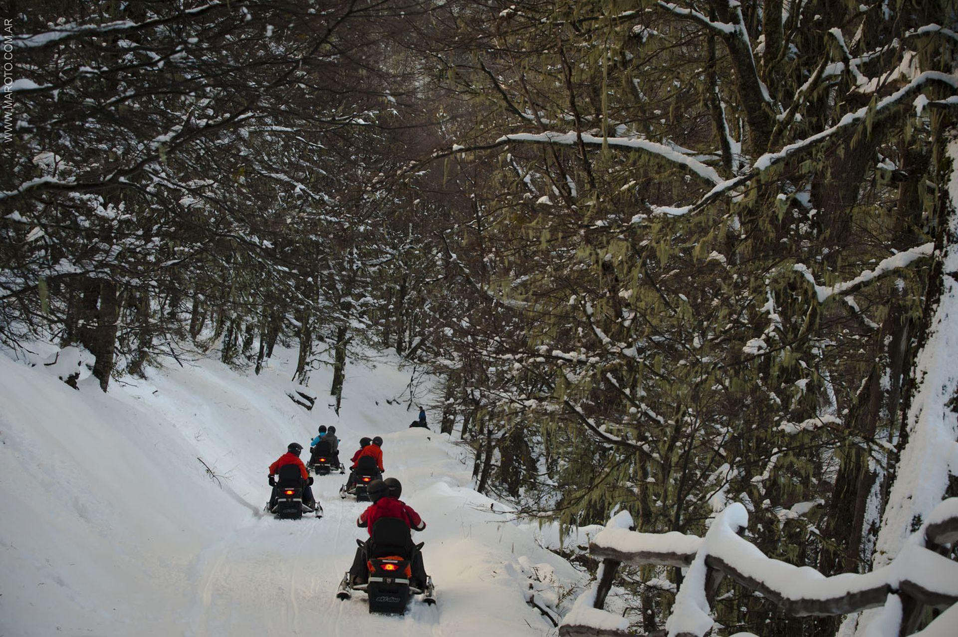 Un paisaje de lengas nevadas acompaña en la subida hasta los 1300 metros donde está El Refugio