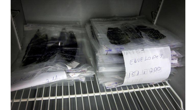 Packs de piel de tilapia esterilizada en el Centro de Desarrollo de Medicina de la Universidad Federal del Ceará en Fortaleza