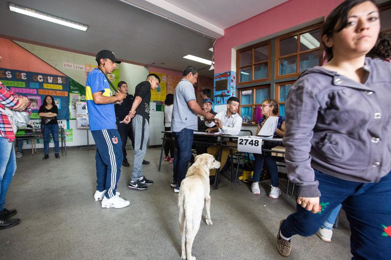 Un perro pasea por una escuela del Barrio Virrey del Pino de La Matanza
