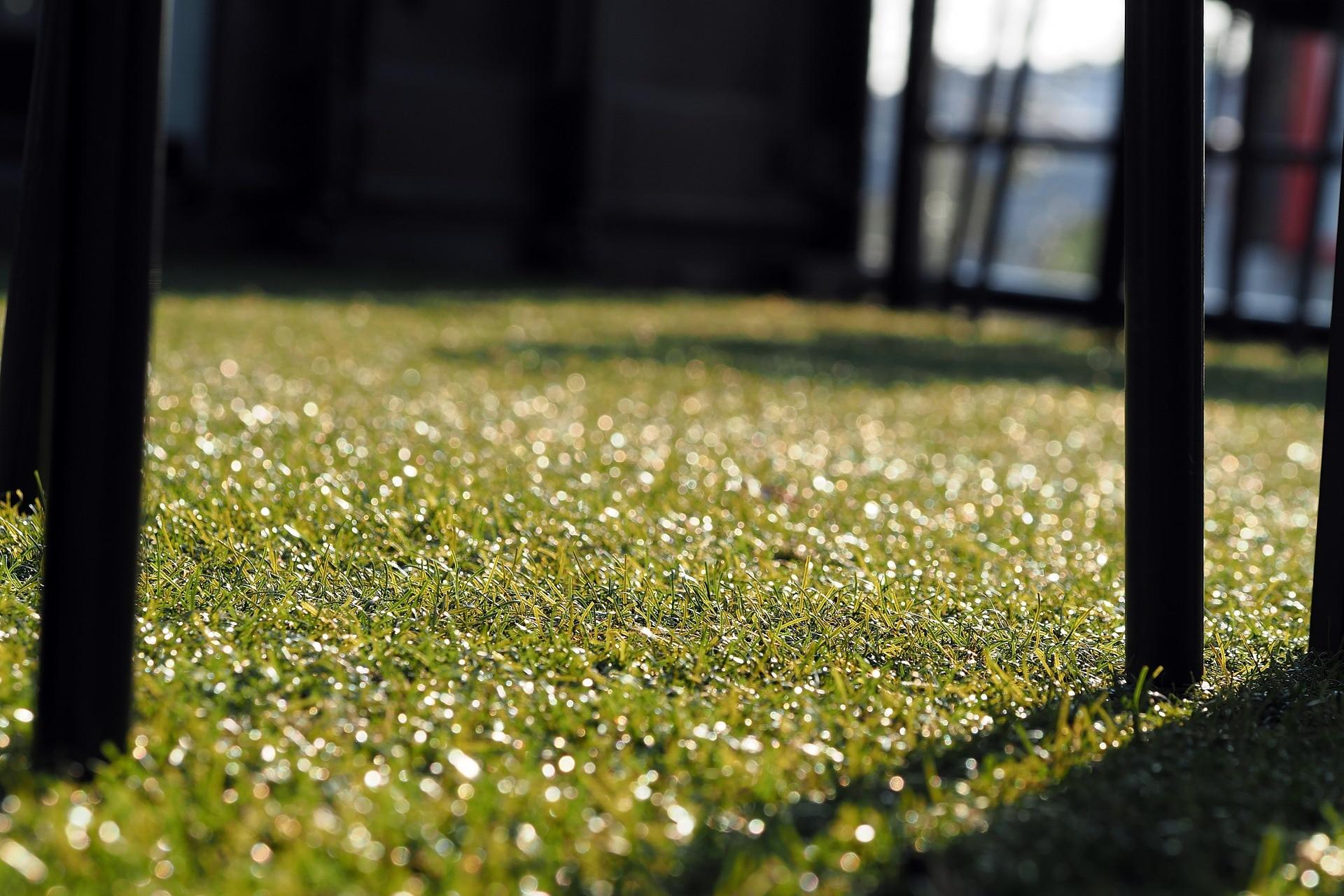 Hoy en el mercado existen alternativas de alfombras de césped sintético con aspecto similar a las de césped natural. El efecto al pisarlo no es el mismo, pero entre colocarlo o no, la decisión de incorporarlo puede ofrecer algunas ventajas.