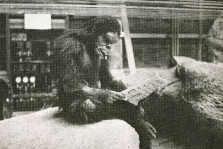 El hombre mono que da por iniciada 2001: odisea del espacio se hace un tiempo para leer el diario