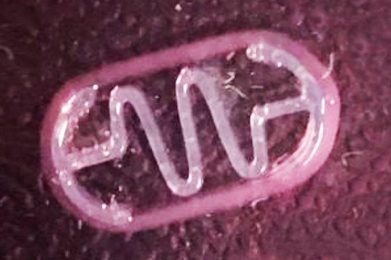 Un biorobot. La estructura está hecha con una impresora 3D, cubierta por células musculares; una descarga eléctrica hace que se contraigan y el resorte hace avanzar el dispositivo por un líquido