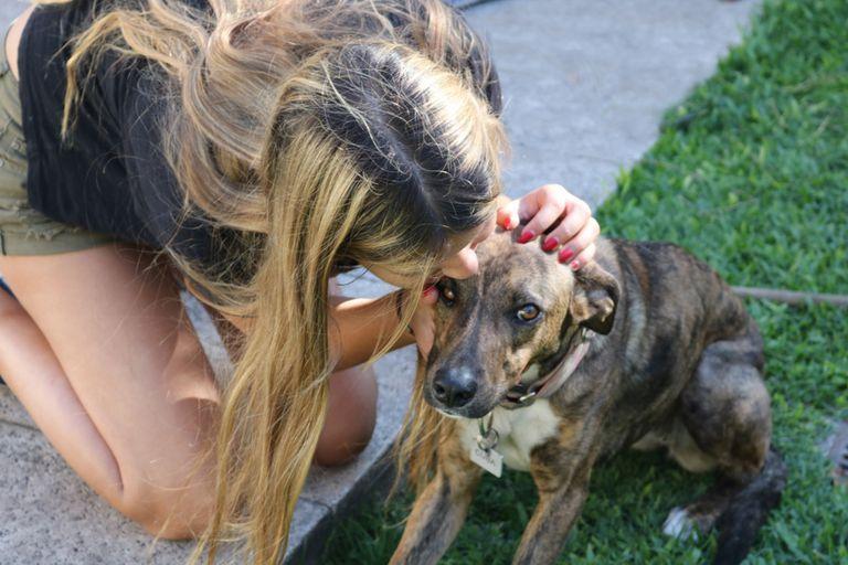 Con 18 años, creó una red de rescatistas que ya salvó a 450 perros de la calle