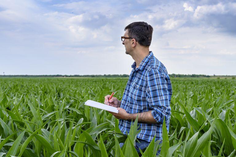 AgTech: la agricultura digital desafía a los ingenieros agrónomos