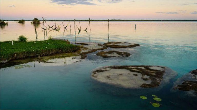 El lago alberga una antigua población de estromatolitos que son la evidencia más antigua de vida en la Tierra