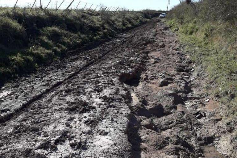 Inédito: en Entre Ríos piden disolver Vialidad porque no arregla los caminos