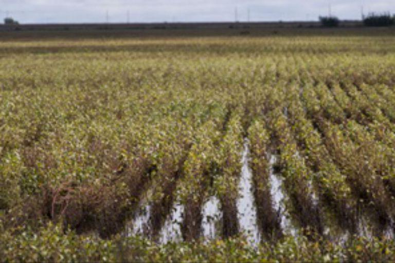 Según un informe oficial, en algunos lugares hay leves excesos tras las últimas lluvias