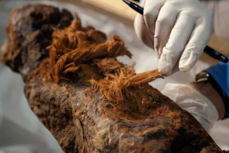 La sorprendente momia del Antiguo Egipto que obliga a reescribir los libros de historia
