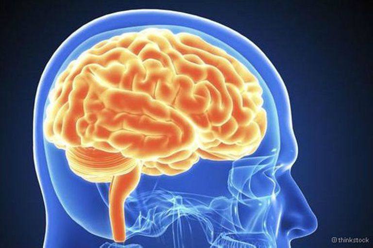 Estas sustancias supuestamente tienen la capacidad de ayudarnos a mejorar nuestro desempeño mental